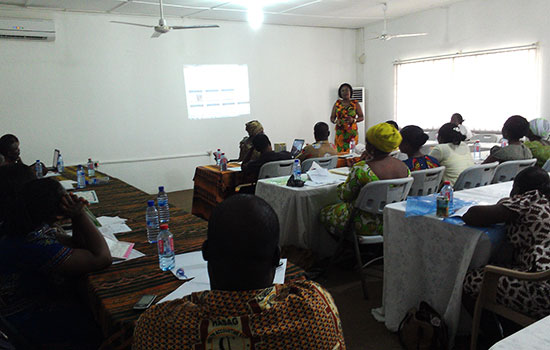 Health Professionals in La Nkwantanang Madina and Kwaebibirem districts receive training on Intellectual Disabilities